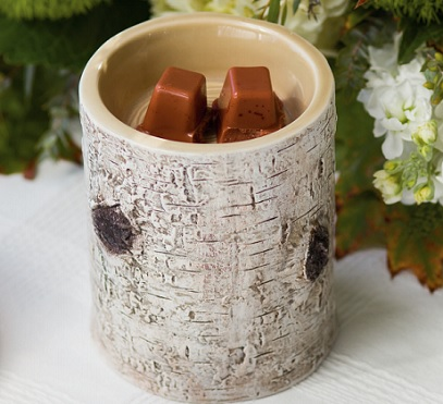 river-birch-december-2014-scentsy-warmer-of-the-month