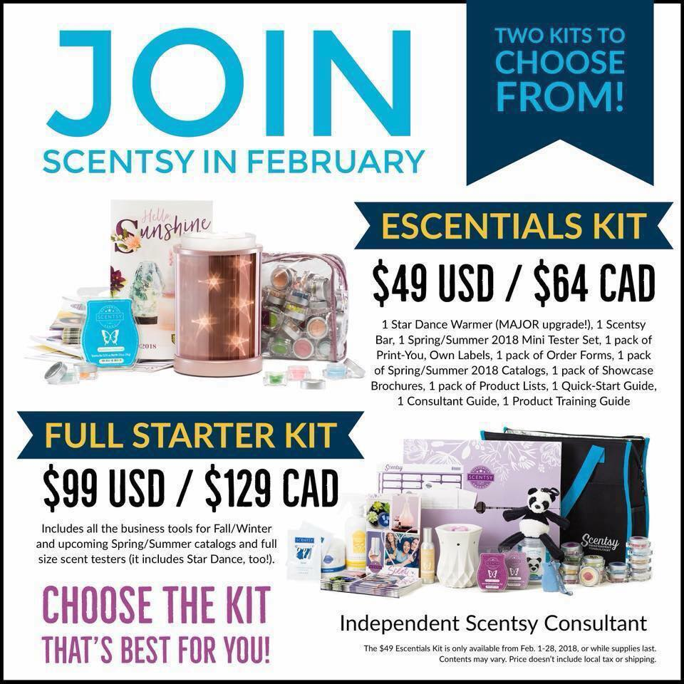 Two Scentsy Starter Kits
