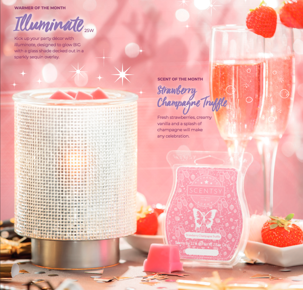 Scentsy January Warmer and Scent